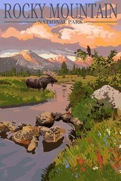 Moose & Meadow - Rocky Mountain National Park - Lantern Press Poster