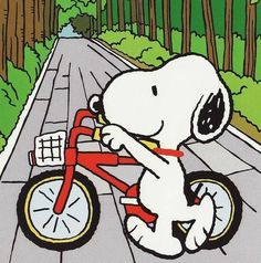 Snoppy goes cycling Snoopy Images, Snoopy Pictures, Peanuts Images, Snoopy Love, Snoopy And Woodstock, Peanuts Cartoon, Peanuts Snoopy, Snoopy Wallpaper, Snoopy Quotes