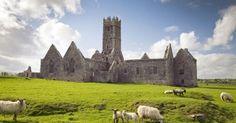 La Ross Errily Abbey - Northern Ireland, Mr Gardiner Mitchell