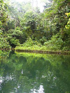 Contágiate de la tranquilidad que la #naturaleza tiene para ofrecerte. Conoce este paraíso escondido, reserva en facebook@arasharesort.com