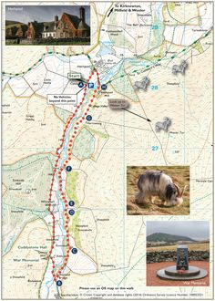 A great route that introduces walkers to the tranquil College Valley. Look out for the Wild Cheviot Goats on the hillside near Hethpool Mill. Hiking Dogs, Camping And Hiking, Northumberland National Park, Walking Routes, Heaven On Earth, Walks, Touring, National Parks, Road Trip