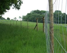 Gardening – Gardening Ideas, Tips & Techniques Rabbit Fence, Deer Fence, Plastic Fencing, Deer Farm, Strong Knots, Types Of Fences, Garden Fencing, Amazing Gardens, Ecology