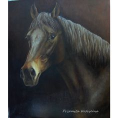 HORSE PORTRAIT, Original Oil PAINTING, Animal painting, Portraits from... (1 645 PLN) ❤ liked on Polyvore featuring home, home decor, wall art, horse wall art, photo wall art, animal oil painting, photo painting and horse paintings