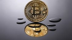 Bitcoin plunges to six-month low Game Development Company, Mobile App Development Companies, Buy Bitcoin, Bitcoin Price, Tail Wagging The Dog, Unity 3d Games, Buy Btc, Six Month