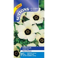 Buy Suttons Hibiscus Simply Love Seeds from Horkans Garden Centre, great value from Irelands Online Garden & Lifestyle Stores Sutton Seeds, All Flowers, Flower Seeds, Hibiscus, Garden Centre, Bloom, Allotment, Goth, Gardening