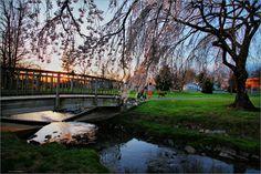Virginia Tech-West Campus Drive Bridge