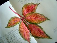 """Thank you again to everyone who entered my """"Watercolor Pencils"""" online class giveaway yesterday. Today's winner is:     Michelle Wea..."""