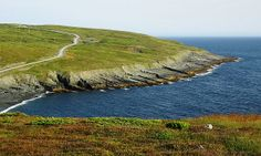 Mistaken Point, on the south east point on the Avalon Pensinula, Newfoundland.
