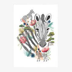 dibujo cebra dibujo botánico ilustración zebra ilustración