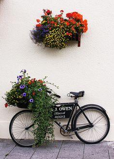 flower bike!
