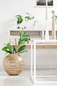 My scandinavian Interior.  Plants • Candle • Inspiration • My Home