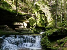 Monbachtal near Bad Liebenzell, Black Forest, Germany