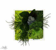 Preserved Plant Painting- No care Green Wall Decor (Tableau Végétal Stabilisé). 20x20 cm