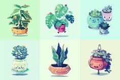 My cute little garden