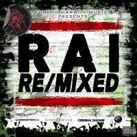 rai vs hip hop megamix rai re mixed cheb khaled vs amr