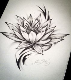 Black and white lotus flower sketch how to d more information mightylinksfo