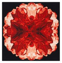 "Poppy Night by Alexander McQueen - The Rug Company 120cm ^2 (3'11"" ^2) $4680"