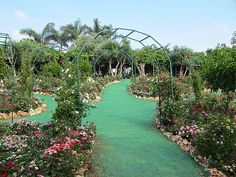 Netanya, Israel - Gardens, Utopia Orchid Park, Kibutz Bahan near Netanya (אוטופיה פארק הסחלבים)