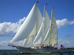 Caribbean cruises vary from small vessels to luxury yachts. We researched cruises from Carnival, Celebrity Cruises and more to help you find the best cruise itinerary. Sailing Yachts For Sale, Yacht For Sale, Ocean Sailing, Sailing Ships, Fort Lauderdale, Sailboat Cruises, San Diego, Guest Cabin, Celebrity Cruises