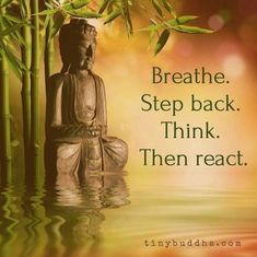 Breathe, Step Back, Think, Then React - Tiny Buddha Breathe. Think… Buddhist Quotes, Spiritual Quotes, Wisdom Quotes, Positive Quotes, Life Quotes, Buddha Wisdom, Buddha Buddhism, Buddha Peace, Buddha Life