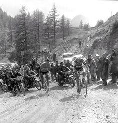 GO! Anquetil - Tour de France 1963 TITANESENDOSRUEDAS