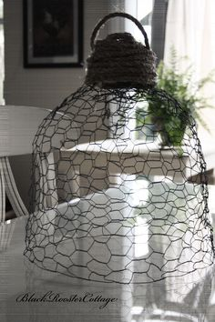 Chicken wire Cloche,, definitely want to give this a try