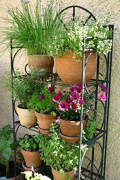 Gegen Platzmangel auf dem Balkon oder der Terrasse: ein Regal für Kräuter und Blumen.