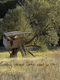 fabulous treehouse + hammock