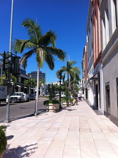 Rodeo Drive 2012