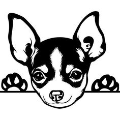 This Chihuahua Peeking Dog Puppy Breed Animal Pet Hound Lap Teacup Mexican Design Logo .PNG Clipart Vector Cricut Cut Cutting is just one of the custom, handmade pieces you'll find in our craft supplies & tools shops. Yorkie Dogs, Dogs And Puppies, Chihuahuas, Teacup Chihuahua, Pet Dogs, Animals And Pets, Cute Animals, Gravure Laser, Amazing Animals