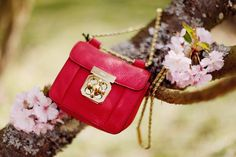Red purses & cherry blossoms