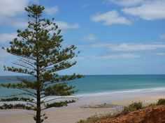 ° Sellicks Beach Photo Gallery (Australia, South Australia) | Tripmondo