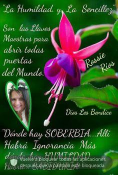 Rossie Ríos