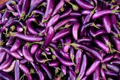 Pile of purple eggplants by Gable Denims on 500px