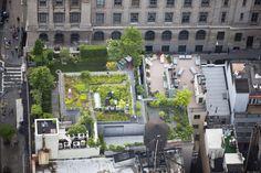 toits terrasses de new york etonnants 5   Les toits terrasses de New York étonnants   toit terasse piscine photographe photo New York image ...