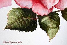 Piccoli Capricci: Una Rosa per tutte le Mamme!