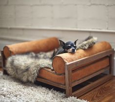 Make your pets experience the luxury of a royal abode by gifting them The Aldo Lounger For Pets this Christmas.