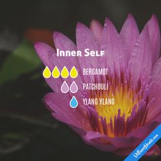 Inner Self - Essential Oil Diffuser Blend
