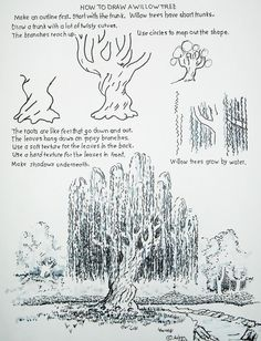 Drawing Techniques How to Draw Worksheets for The Young Artist: How to Draw a Willow Tree. Drawing Lessons, Drawing Techniques, Drawing Tutorials, Drawing Tips, Art Tutorials, Painting & Drawing, Drawing Drawing, Rendering Techniques, Drawing Projects
