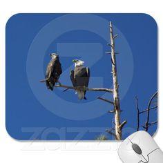 Bald Eagles Mousepads