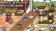 Neko Atsume Cheats