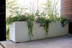 Modern Mondo Quint Planter by Loll Designs Tall Planter Boxes, Outdoor Planter Boxes, Tall Planters, Cement Planters, Modern Planters, Flower Planters, Flower Pots, Flowers, Contemporary Outdoor Decor