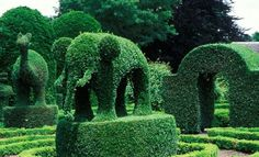 Green Animals Topiary Gardens, Rhode Island | Roadtrippers