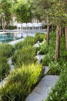 Native Grasses in lieu of mown varieties make good sense in modern landscapes.