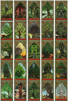 green-man-tree-oracle. A friend bought me this beautifully illustrated tarot set at a beautiful sunny festival many moons ago.