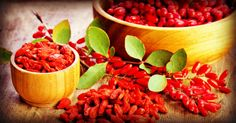 Why are goji berries so popular? These are the health benefits powering their superstar status: http://blog.lifeextension.com/2015/09/the-power-of-goji-berries.html #goji #nutrition