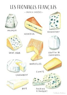 Cool concept - series with cupcakes or other sweets? Watercolor food illustration - French Cheese - Nathalie Ouederni www. Cheese Drawing, Food Drawing, Watercolor Food, Watercolor Illustration, French Illustration, Watercolor Painting, Food Design, Fromage Cheese, Cheese Food