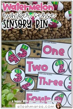 Looking for number sense activities for preschool and kindergarten learners? These watermelon sensory bin activities are perfect for learning at home with little ones. Click the pin to see the fun activities included! Number Sense Activities, Kindergarten Math Activities, Hands On Activities, Fun Math, Preschool Activities, Learner Sign, Summer Science, Number Recognition, Writing Numbers