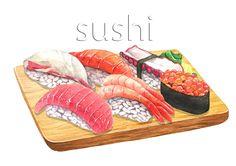 food illust sushi