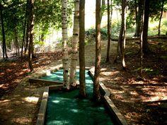 Post with 0 votes and 7 views. Gordon Parks, Putt Putt, Event Calendar, Hiking Trails, Activities, Mini, Plants, Miniature Golf, Plant